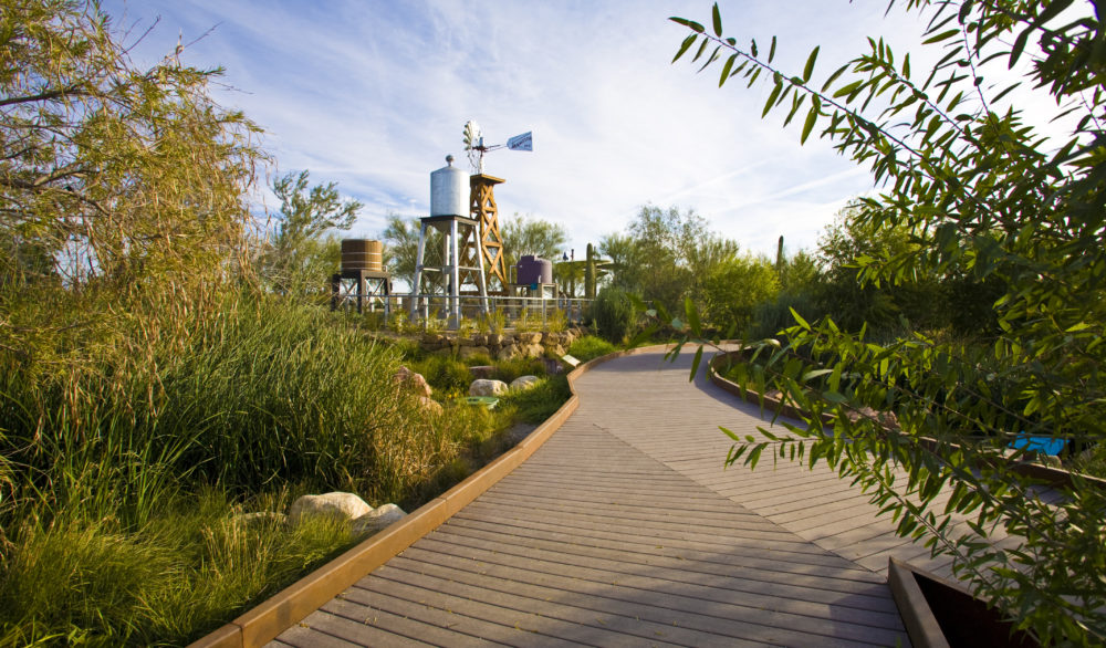 The gardens leading to the Waterworks Facility at the Springs Preserve.