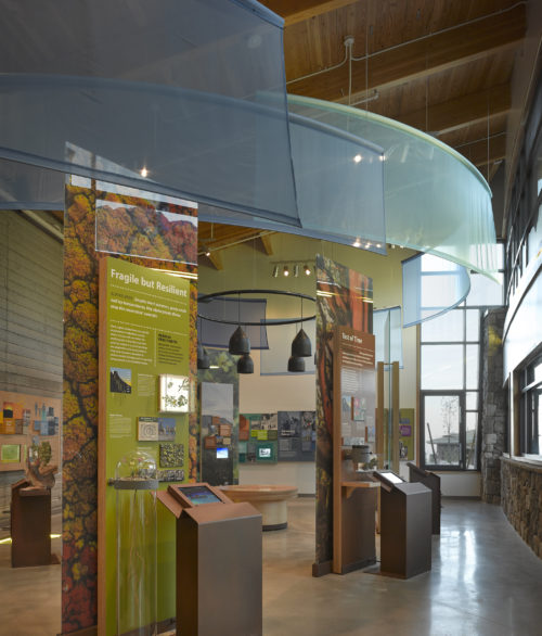 An exhibit inside of the Spring Mountains Visitor Gateway, masterplan and design by LGA Architecture.