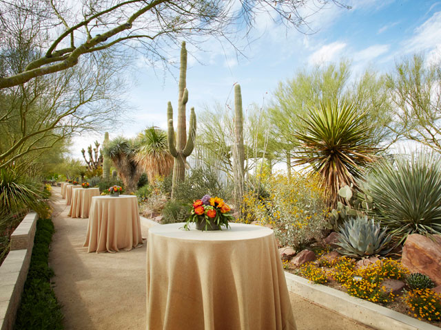 Cocktail tables set up in the cactus gardens at the Springs Preserve Venue.